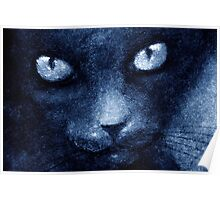 ODESSA LE CHAT BLEU Poster