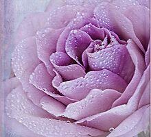 Purple Prose  by SandraRos