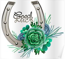 Horseshoes in silver color with succulent design. Poster