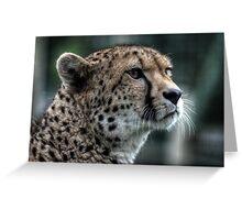 Cheetah (3) Greeting Card
