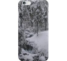 Arosa Frozen Brook iPhone Case/Skin