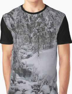 Arosa Frozen Brook Graphic T-Shirt