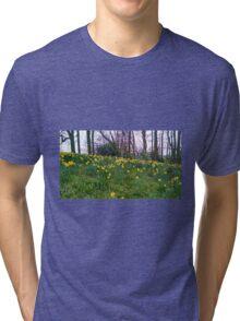 Daffodils Rising Tri-blend T-Shirt