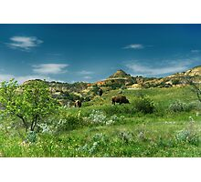 Theodore Roosevelt National Park Photographic Print