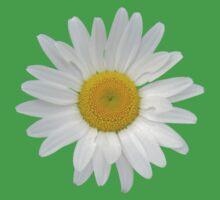Daisy on lilac grey background One Piece - Short Sleeve