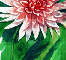 Gorgeous Dahlia Sticker
