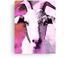 Goat Art - Pinky Canvas Print
