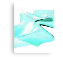 Curvature & Nodes Canvas Print