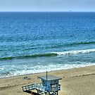 Beach Life At Torrance Beach California by K D Graves Photography