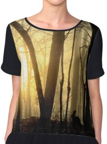 Nibbling Bunny Meets Morning Sun in Foggy Forest Chiffon Top