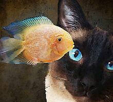Wishful Thinking 2 - Siamese Cat Art - Sharon Cummings by Sharon Cummings