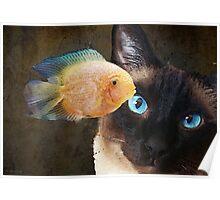 Wishful Thinking 2 - Siamese Cat Art - Sharon Cummings Poster