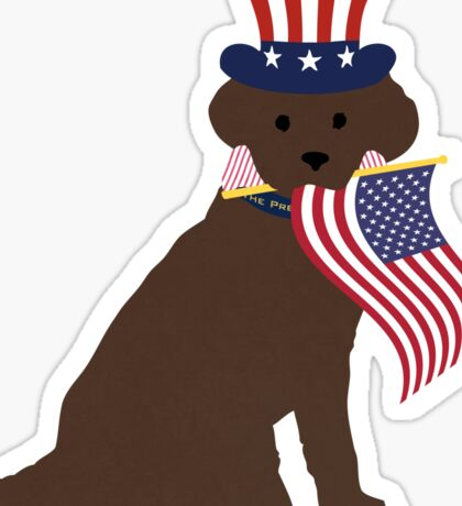 Preppy Patriotic Chocolate Lab Sticker