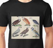 Naturgeschichte in Bildern mit erläuterndem Text E Strack 1820 Lief 2 Birds 003 Unisex T-Shirt