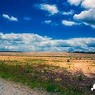 Wide Open spaces by TJ Baccari Photography
