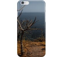 Brown Earth iPhone Case/Skin
