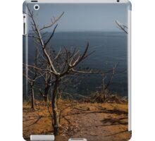 Brown Earth iPad Case/Skin