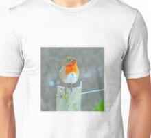 robin Unisex T-Shirt