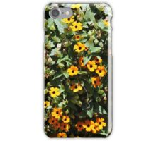 Bush Covered With Yellow Flowers iPhone Case/Skin
