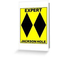 JACKSON HOLE WYOMING DOUBLE BLACK DIAMOND SKIING SKI EXPERT ONLY Greeting Card
