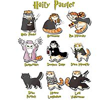 Hairy Pawter Meow 9 Characters Photographic Print