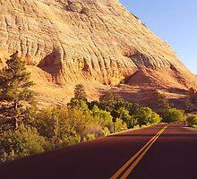 The Road through Zion by Scott Mason