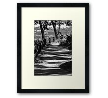 Shadow Path Framed Print