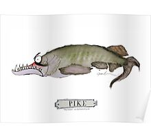 Pike Fish, tony fernandes Poster