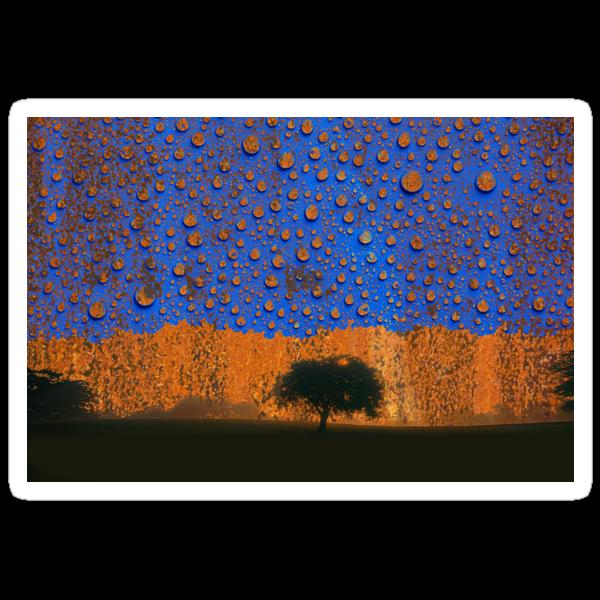 Acid Rain by Andrew Bret Wallis