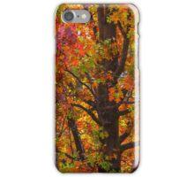 Art of Nature iPhone Case/Skin