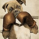 The Boxer by Eric Fan