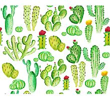 watercolor cactus Photographic Print