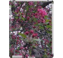 Crab Apple Blossoms iPad Case/Skin