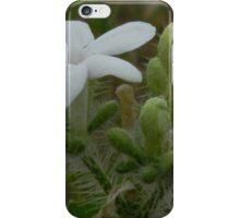 The Bull Nettle Flower iPhone Case/Skin