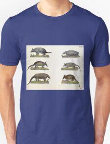 Naturgeschichte in Bildern mit erläuterndem Text E Strack 1820 Lief 1 Mammals 027 T-Shirt