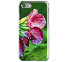 The Purple Allamanda Too  iPhone Case/Skin