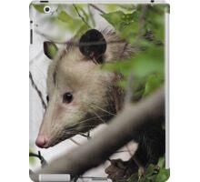 RAT FACED CRITTER iPad Case/Skin