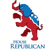 House Republican Photographic Print