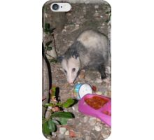 Baby Possum Was Hungry iPhone Case/Skin