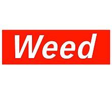Supreme Weed Photographic Print