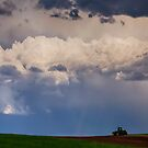 Country Spring Storm by Bo Insogna
