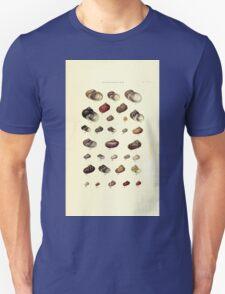 Thesaurus conchyliorum Monographs of genera of shells George Brettingham Sowerby 1887 V1-V5 177 T-Shirt