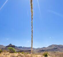Desert Sundial Sticker