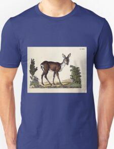 Naturgeschichte in Bildern mit erläuterndem Text E Strack 1820 Lief 1 Mammals 067 T-Shirt