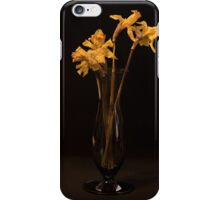 Only Yesterday iPhone Case/Skin