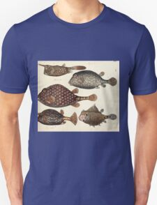 Naturgeschichte in Bildern mit erläuterndem Text E Strack 1820 Lief 4 Fish 014 T-Shirt