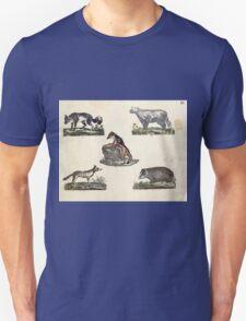 Naturgeschichte in Bildern mit erläuterndem Text E Strack 1820 Lief 1 Mammals 009 T-Shirt