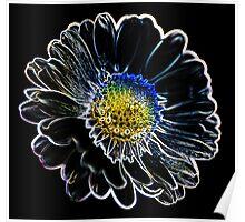 bloom -  art Poster