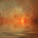 Fire and Flood by Ursula Rodgers