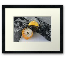 Halloween pumpkin and gourd Framed Print